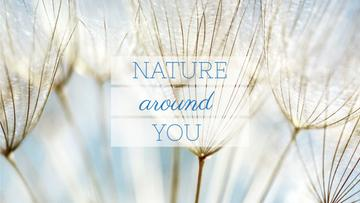 Nature Quote on Tender Dandelion Seeds