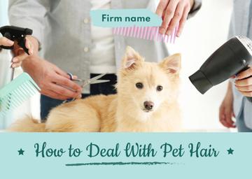 pet salon poster