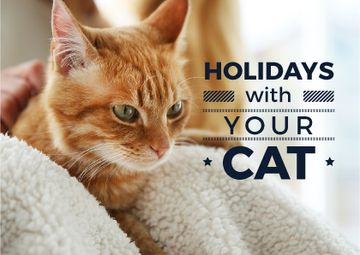 Holidays with your cat poster with red cat