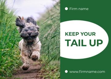 Adorable little Yorkshire Terrier