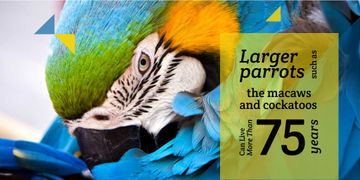 Bright Parrot and informational text