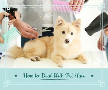pet hair salon poster