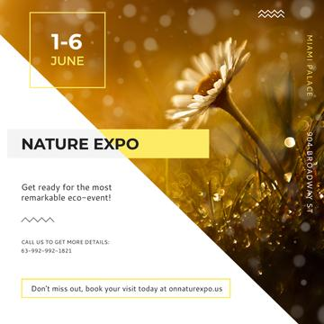 Nature Expo Invitation with Wild Flower