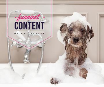 Washing Dog Cute Puppy in Foam