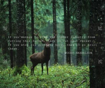 Nature Quote Wild Deer with Antlers