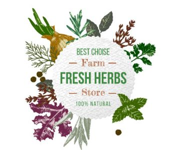 Fresh herbs sale advertisement