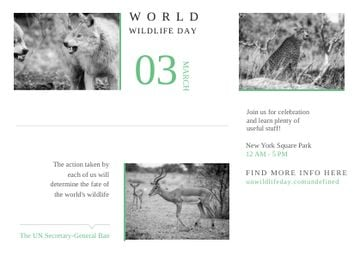 World wildlife day Announcement