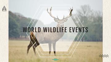 World wildlife events