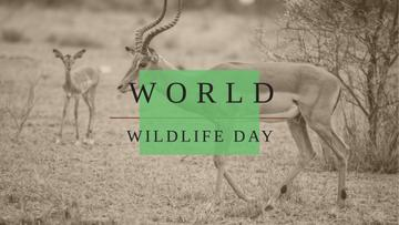 World Wildlife Day with Antelope in Natural Habitat