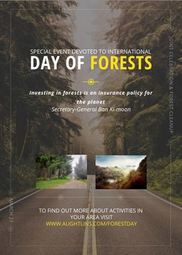 International Day of Forests Event Forest Road View