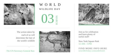 World Wildlife Day with Animals in Natural Habitat