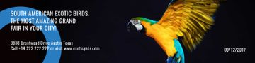 South American exotic birds fair