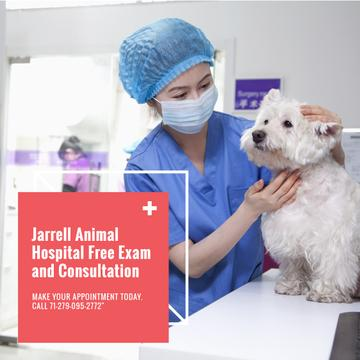Veterinarian examining Dog in Animal Hospital