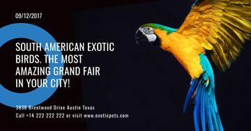 South American exotic birds shop