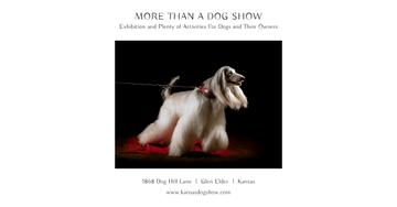 Dog show Announcement