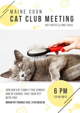 Cat club meeting