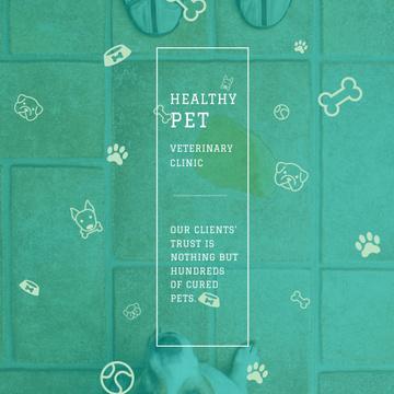 Healthy pet Veterinary Clinic ad