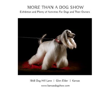 Dog Show in Kansas