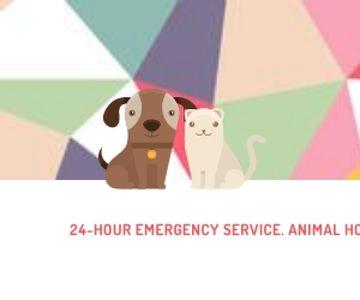 24-hour animal hospital