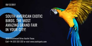 Exotic Birds Shop Ad with Flying Parrot