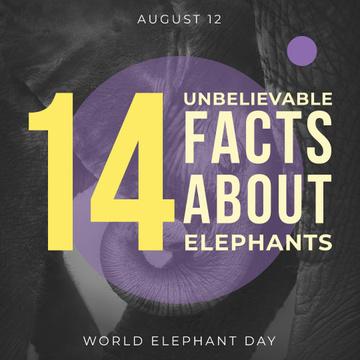 World elephants day Announcement