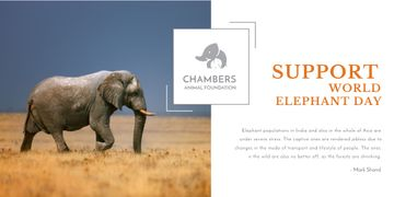 Support world elephant day poster