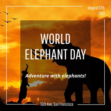 World Elephant Day greeting on sunset