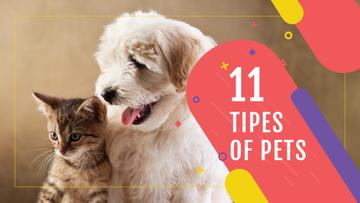 Pets Behavior Cute Dog and Cat