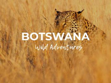 Botswana wild adventures