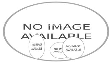 Circus Show Announcement Clowns on Arena