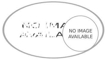 Tyrannosaur Rex Stomping in Jurassic Landscape