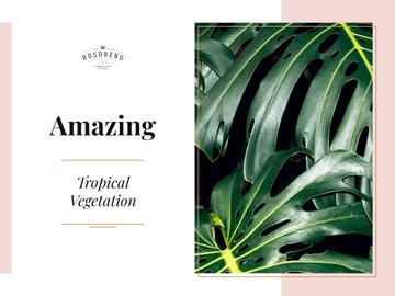 Amazing tropical vegetation