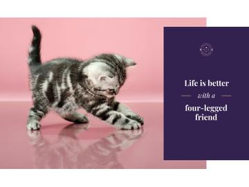 Pets Inspiration Quote Cute Kitten Playing