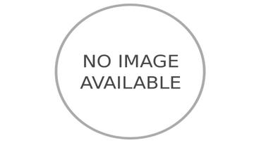 Easter Decorations Offer Cute Animals Toys