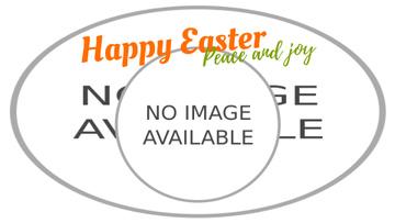 Easter Greeting Bunnies in Basket