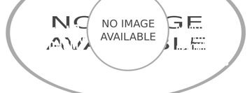 Night sky with Gemini constellation