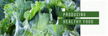 Healthy Food with Green Cabbage