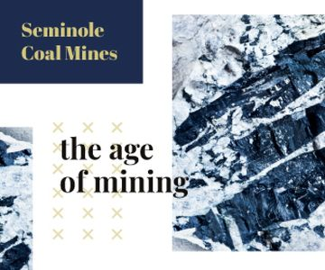 Mining Industry Black Coal Pieces