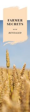 Farming Secrets Wheat Ears in Field