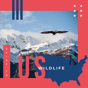 Wild eagle bird in mountains