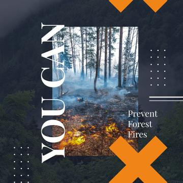 Ecology concept with Fire in dense forest