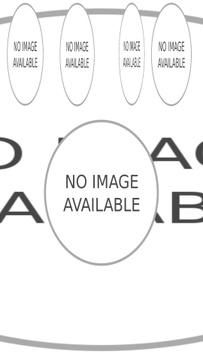 Chinese New Year Dragon Greeting