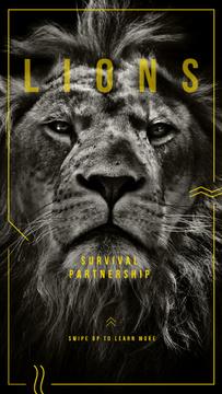 Survival Partnershop with Wild male lion