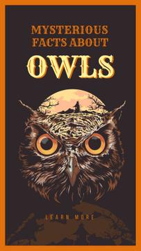Wild owl bird illustration