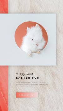 Easter Greeting Cute White Bunny
