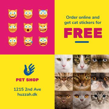 Pet Shop Offer with Cat Faces and Stickers