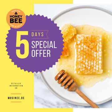 Sweet Honey Offer Combs and Dipper