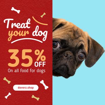 Dog Food Sale Cute Pug Face
