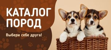 Dog Breed Guide with Corgi Puppies in Basket