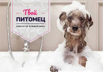 Washing Dog Tips with Cute Puppy in Foam